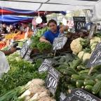 South American Market: Penanolen, Santiago, Chile