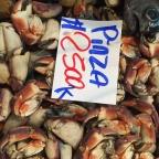Santiago Fish Market: Terminal Pesquera Metropolitano